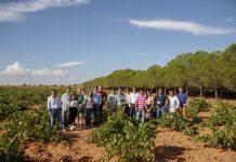 La misión inversa también pudo pisar algún viñedo de La Mancha en plena vendimia