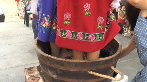 Pisada de uva en las fisetas patronales de Corral de Almaguer