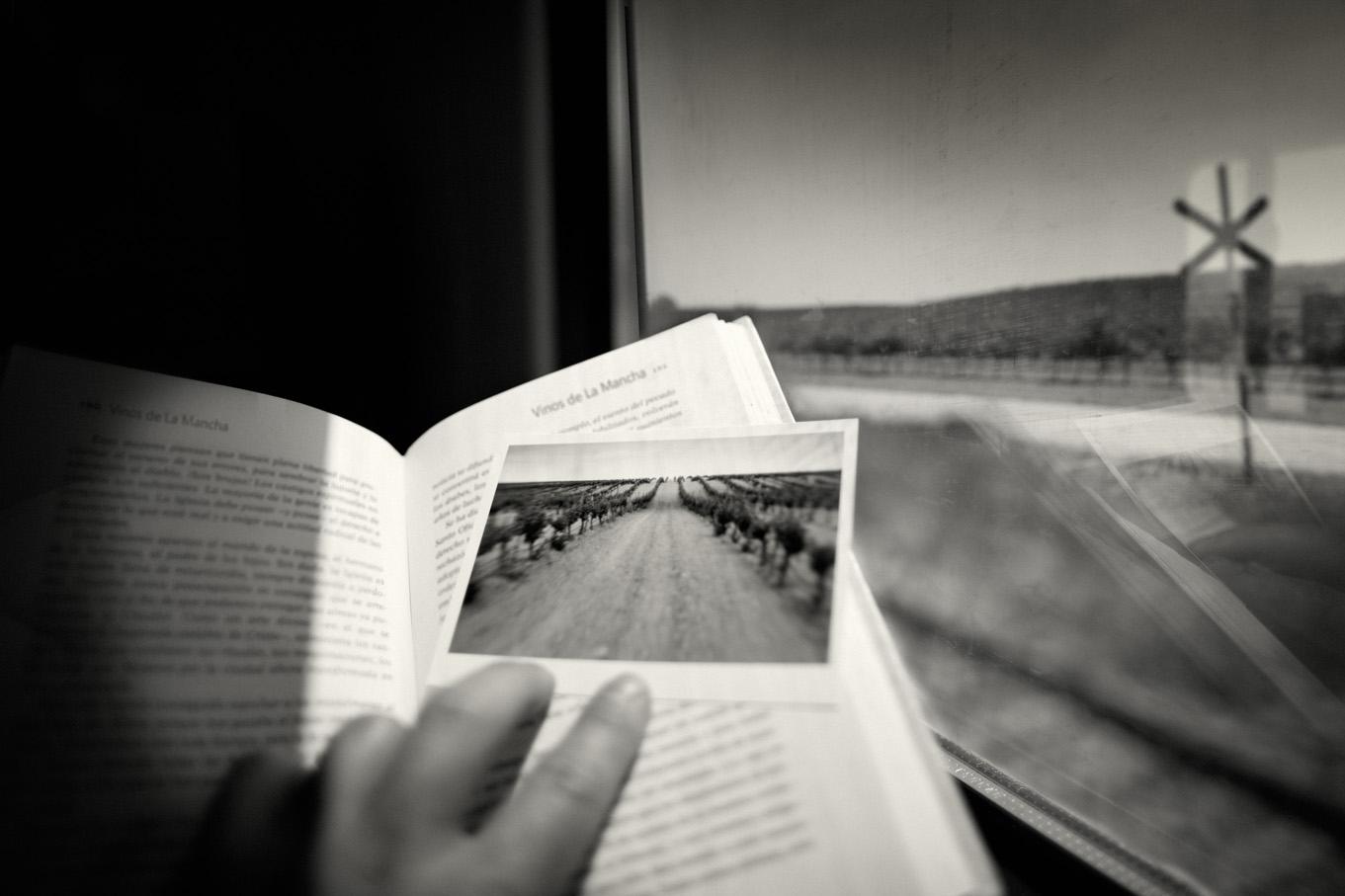電車から楽しむワインツーリズム