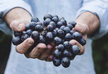 polifenoles uva tempranillo de La Mancha para regeneración capilar