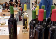 Cata de vinos DO La Mancha en la Universidad Complutense