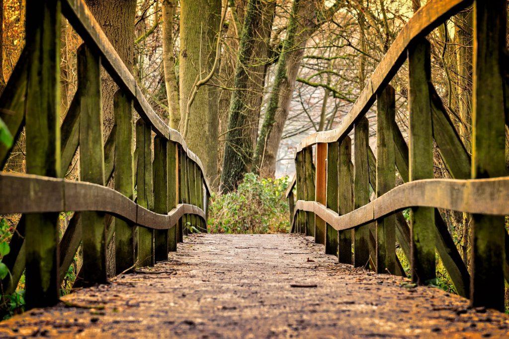 El contacto con la naturaleza nos ayuda a vencer la tristeza