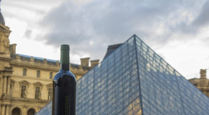 Los vinos DO La Mancha en Wine París (2)
