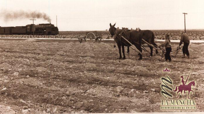 Imagen antigua mediados del siglo XX en La Mancha