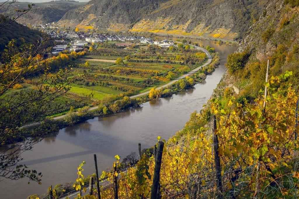 Viñedos junto al río Mosel en Alemania. Imagen de Tama66 para Pixabay