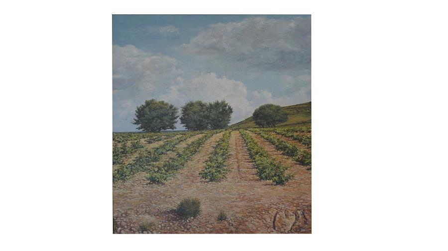 Hileras de viñas en el campo. Cielo despejado y varios árboles en el fondo.