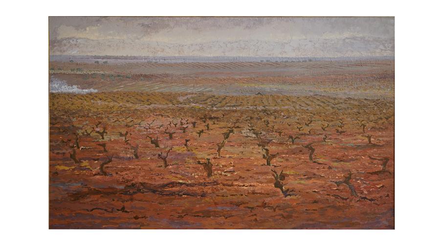 Paisaje repleto de viñas. Tierra árida y con poco color.