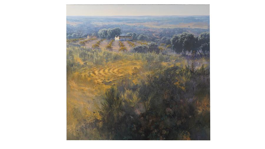 Panorámica del paisaje manchego. En él vemos viñedos y monte en La Mancha.