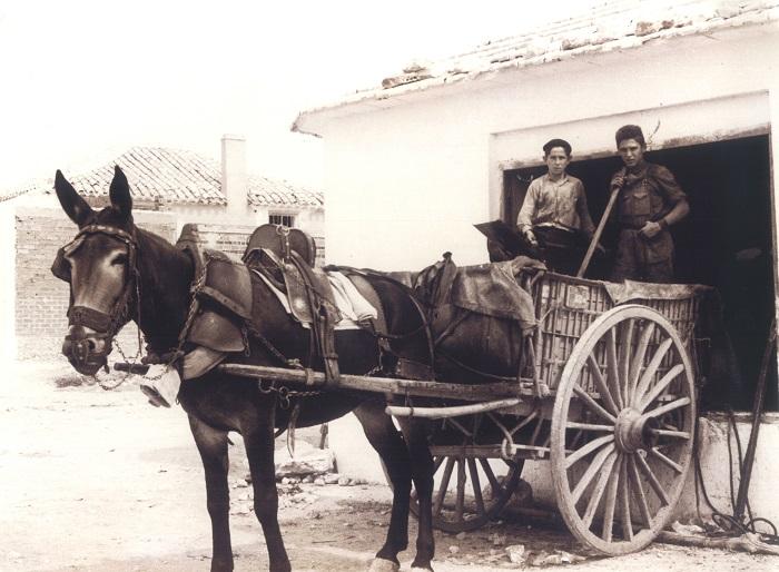 Carro con mulas y dos vendimiadores.