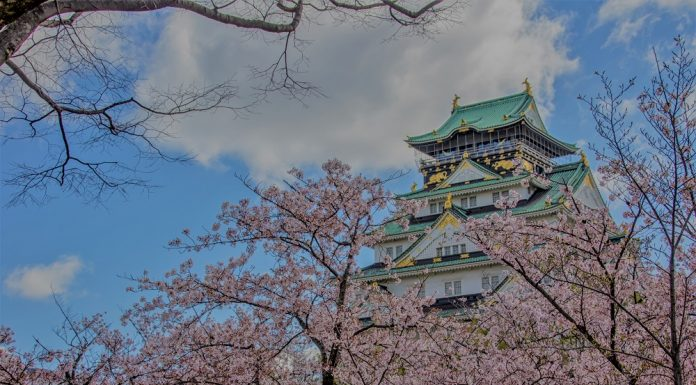 Edificio tradicional, rodeado de cerezos, árbol tradicional en Japón