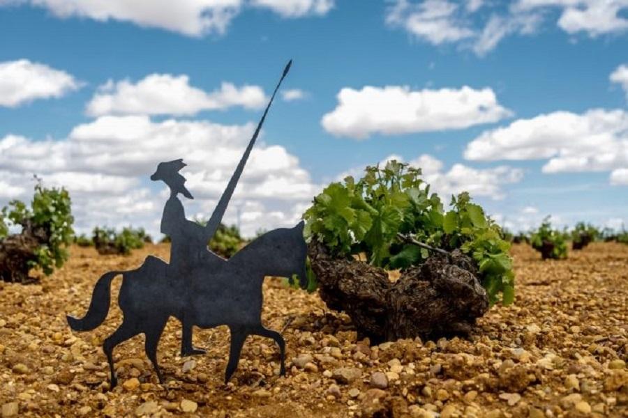 Gran potencial de la Ruta del Vino de La Mancha